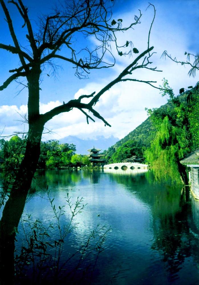Pond,  Lijang