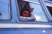 Blue bus boy, Udaipur