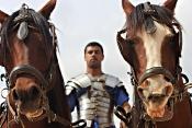 Chariot Horses